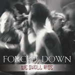 FORCEDDOWN3